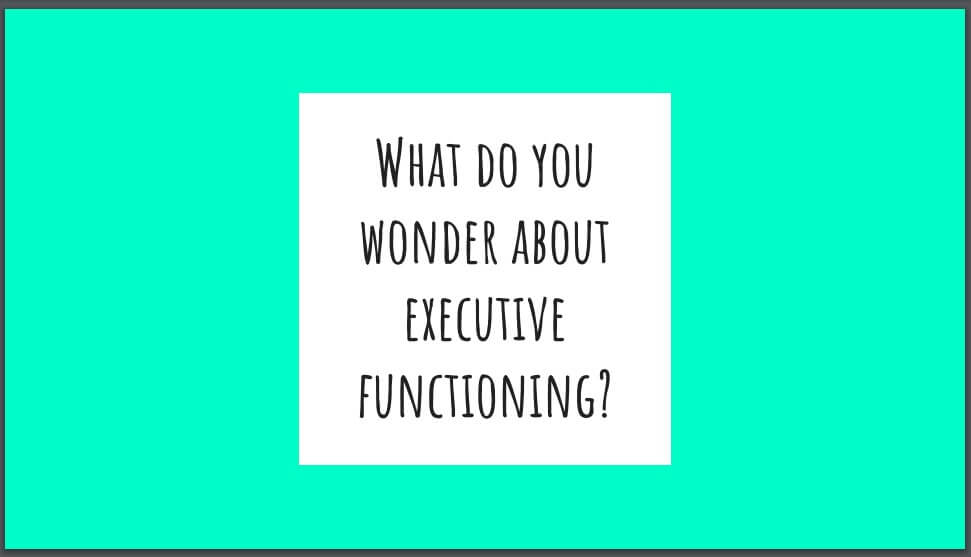 What Do You Wonder About Executive Functioning image